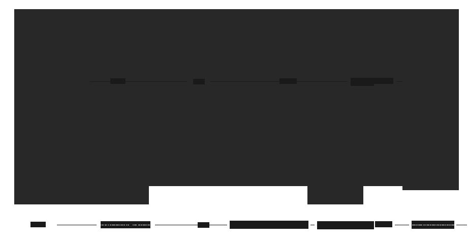 Circuit interne du FiiO X5 VS FiiO X3