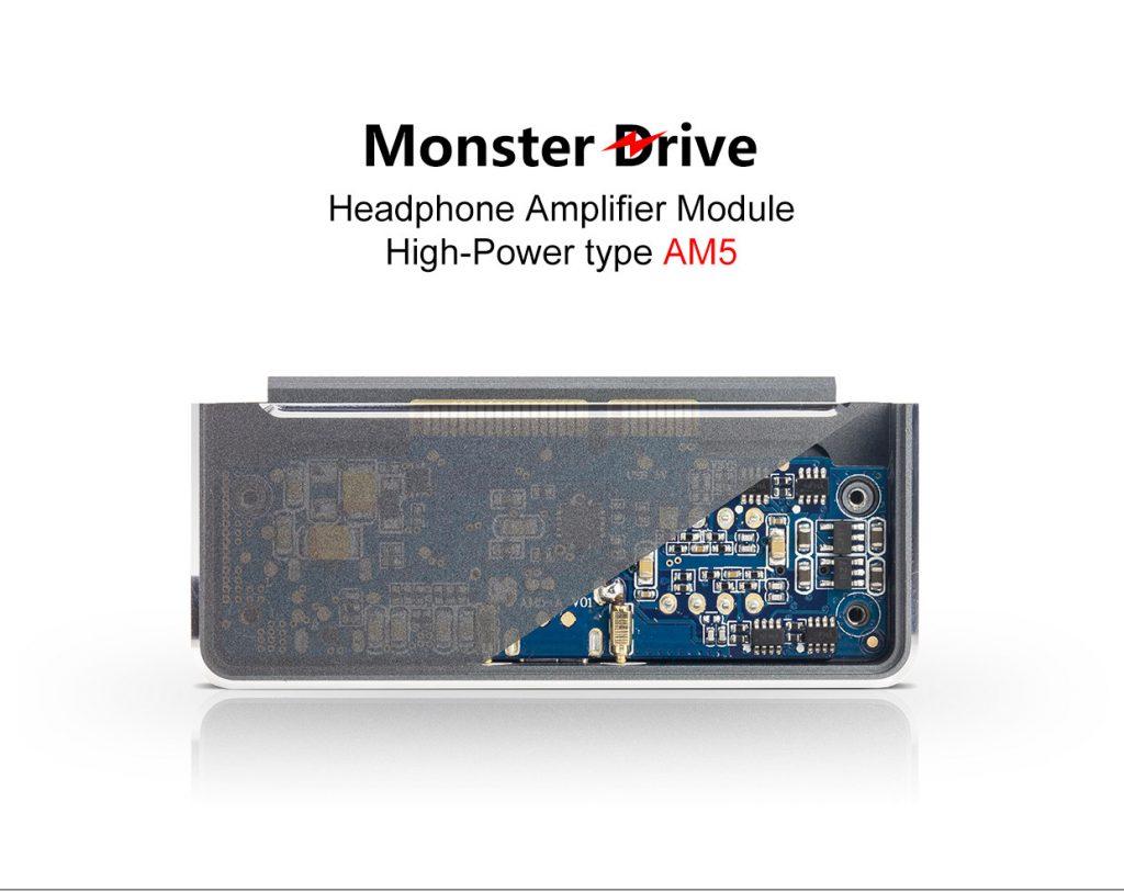 Le FiiO AM5 est un module 'amplification de forte puissance. Taillé pour les casques les plus dur à driver !